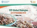Report from IYP Regional Dialogues - Near East and North Africa
