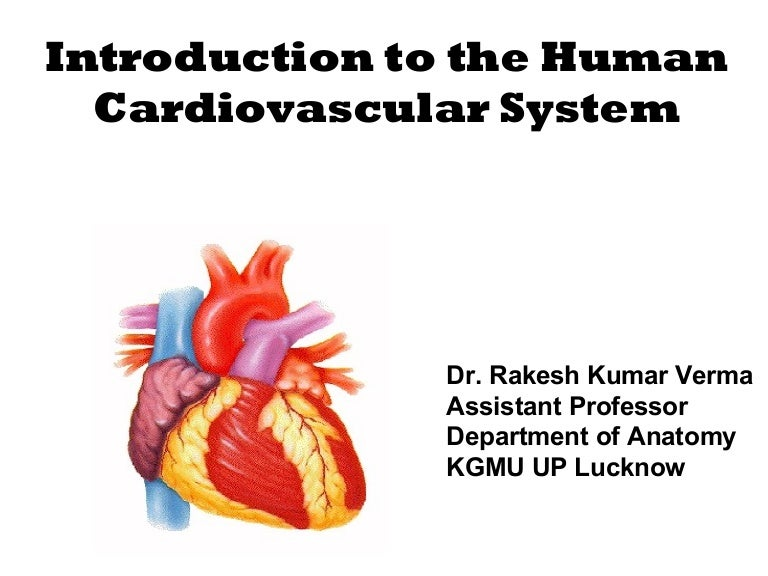 Ppt On Human Circulatory System