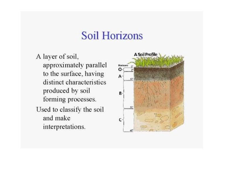 4soil Horizon