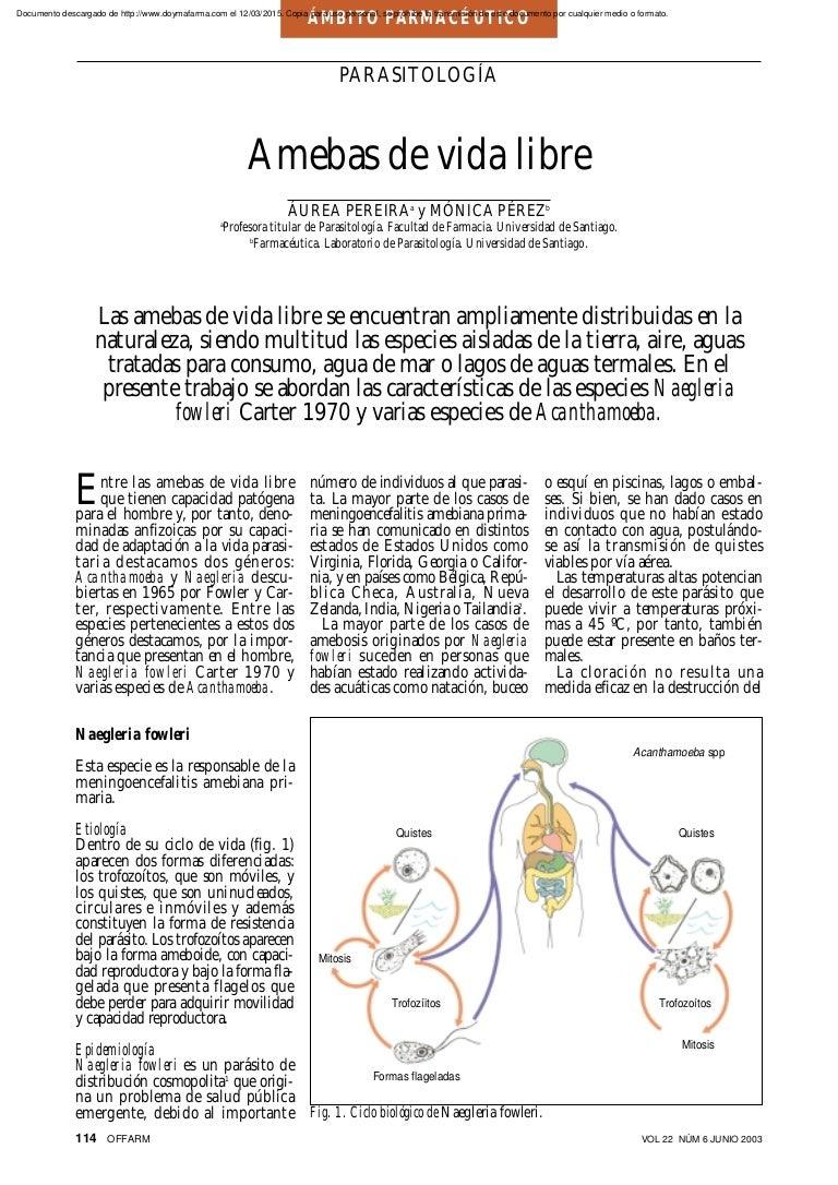 infección por parásitos acanthamoeba