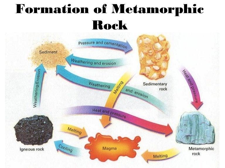 54 Metamorphic Rock
