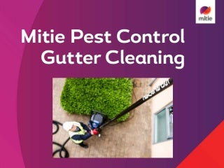 M&B Mitie Gutter cleaner