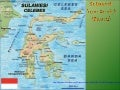 541-Celebes-Sulawesi -Annick