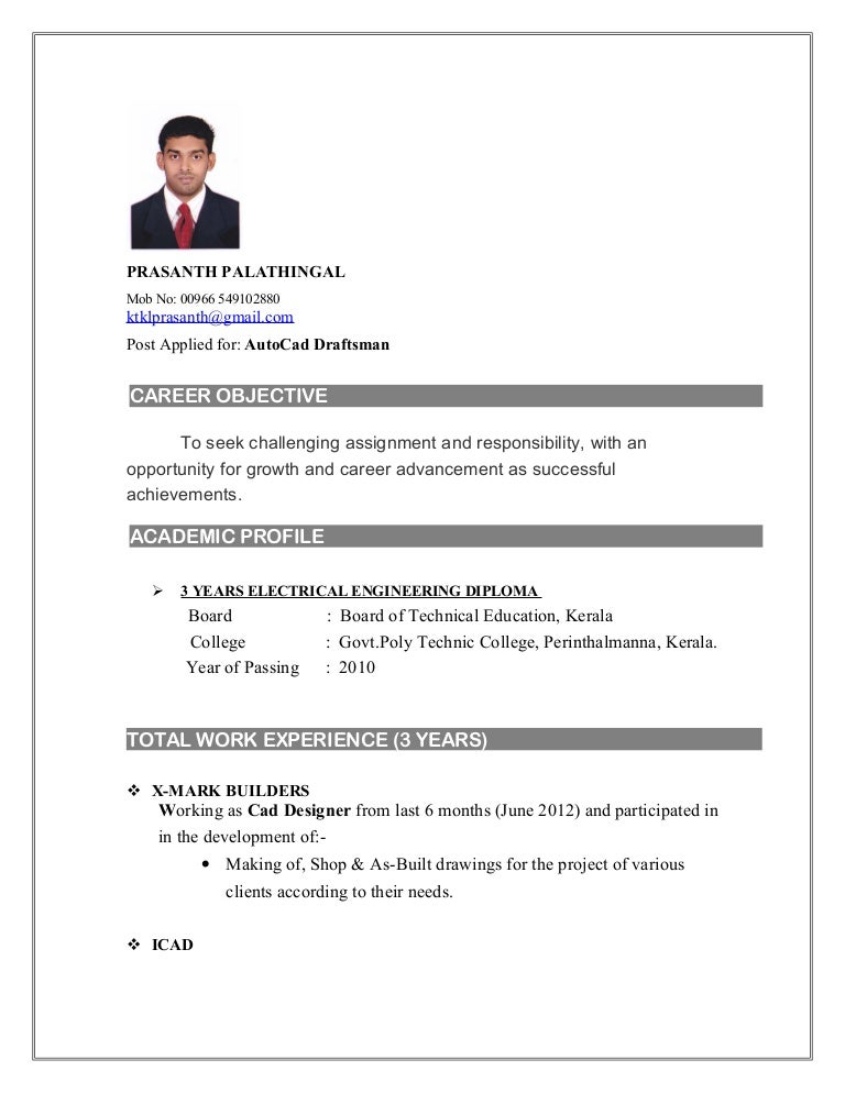 Sample Autocad Drafter Resume] Professional Autocad Drafter ...