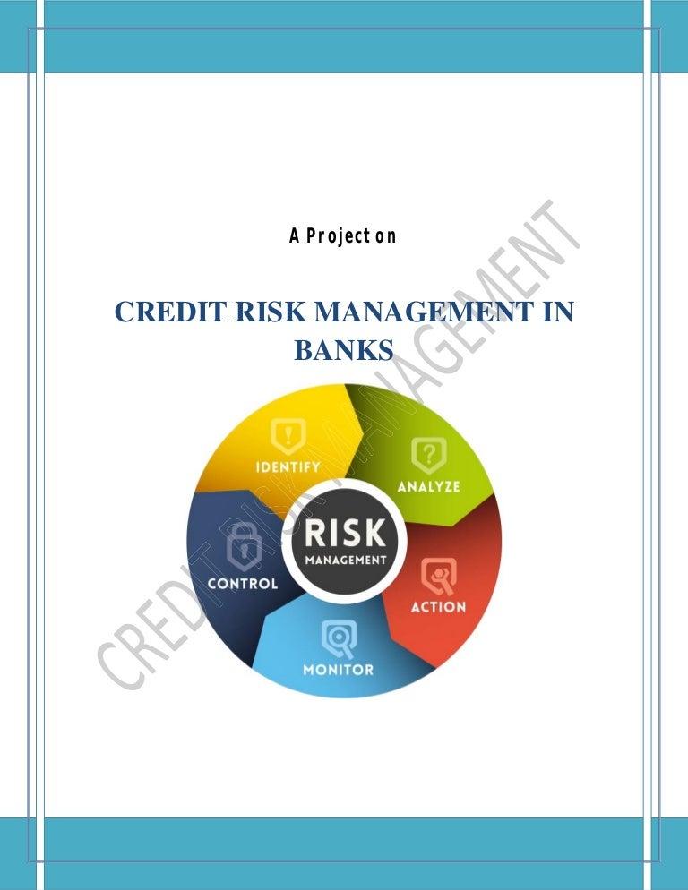 Credit risk management dissertation