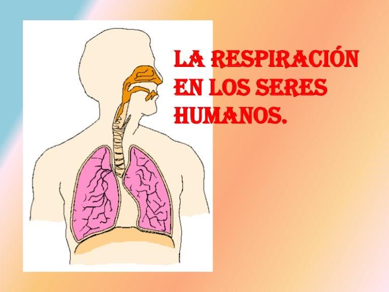 5º CM-04 la respiración