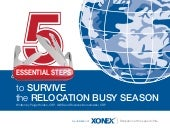 5 Essential Steps to Survive the Relocation Busy Season