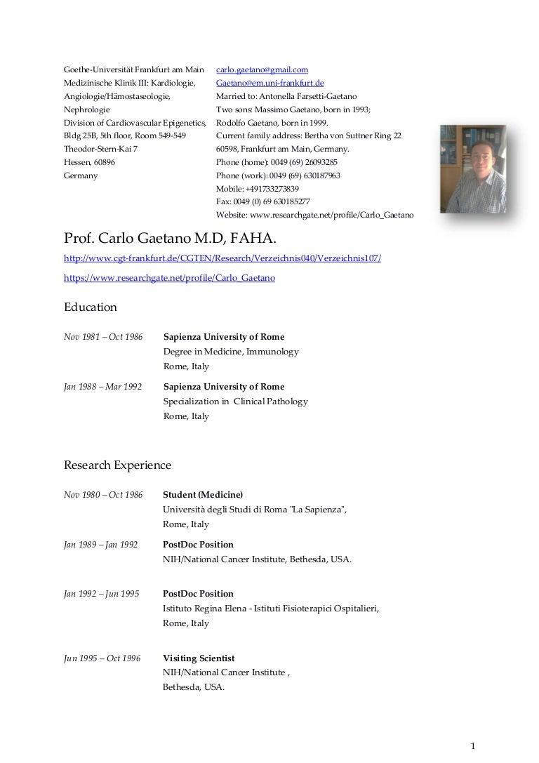 Curriculum Vitae Carlo Gaetano November 18th 2015 New