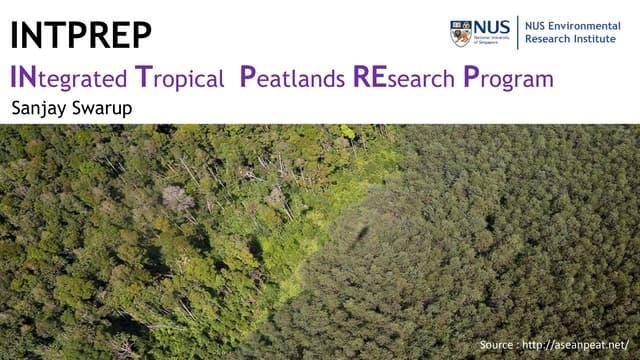 INTPREP - INtegrated Tropical  Peatlands REsearch Program