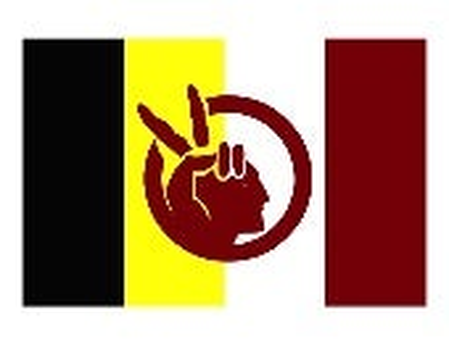 A.I.M. Flag