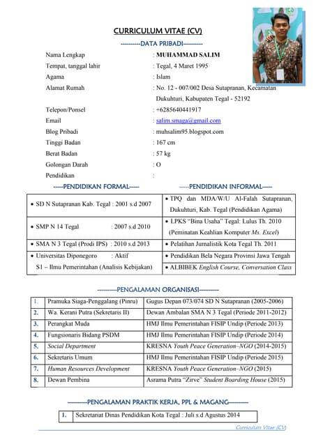 Curriculum Vitae Salim Pdf