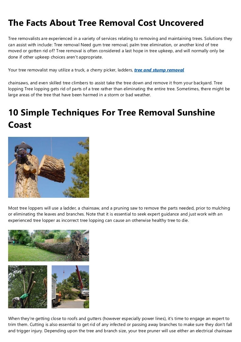 Tree stump remover  Industrial version