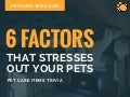 6 Factors That Stresses Out Your Pet