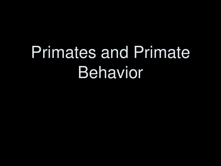 the significance of studying primate behavior Behaviors universal among modern primates give us clues to our ancestors' behavior 2 allows reconstruction of social structure, ecology, and intelligence of early humans 3 compare and contrast primate social organizations, communication, intelligence 4.
