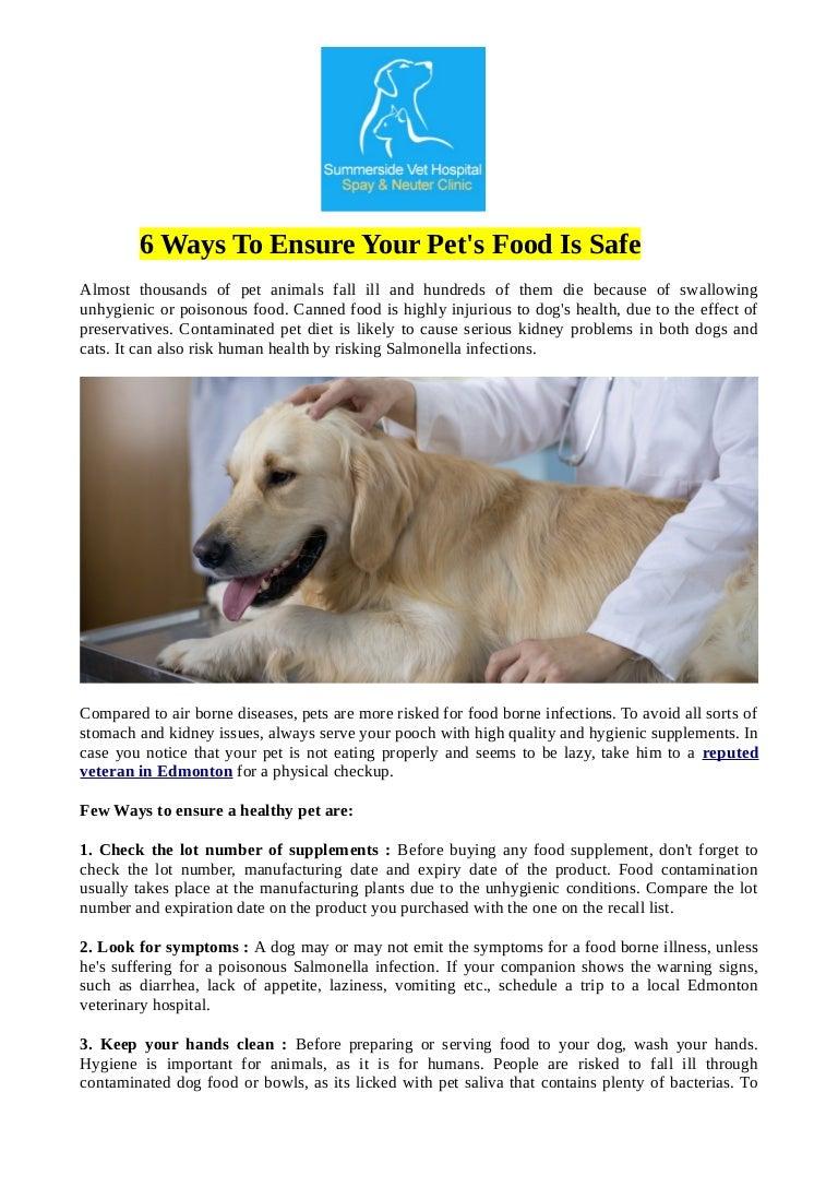 3 Ways to Buy Dog Food
