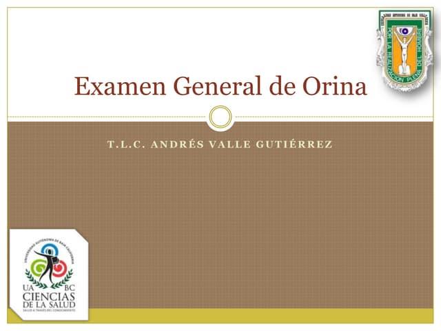 7.1.  Examen General de Orina (EGO)
