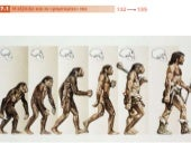 7.1 H εξέλιξη και οι μαρτυρίες της