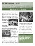 Summer 2005 Nevada Wilderness Project Newsletter