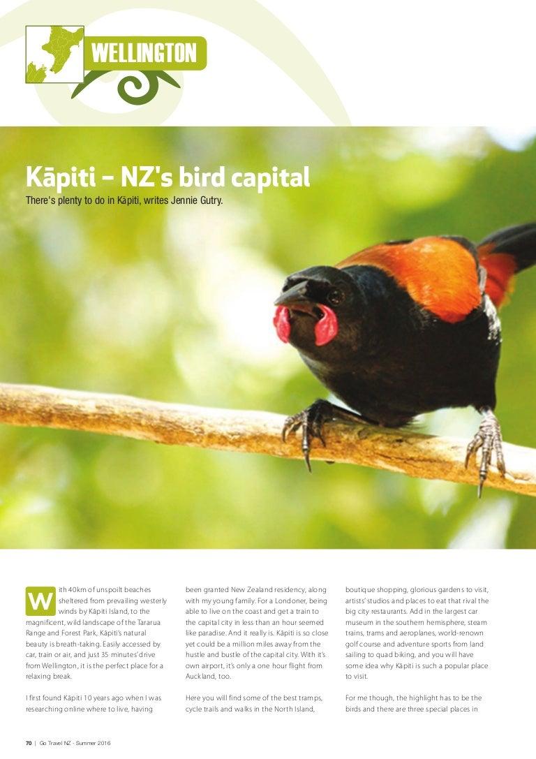 Go Travel Kapiti Birds