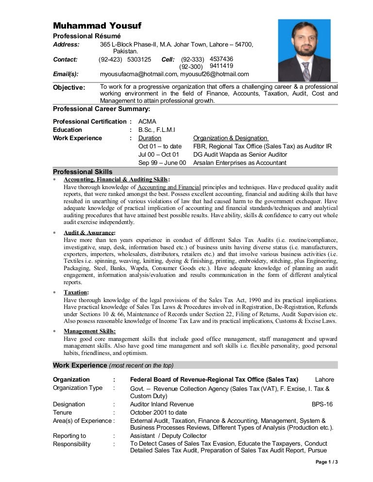 Auditor Resume  External Auditor Resume