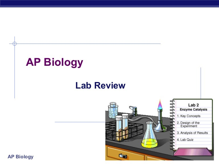 76 Lab Review