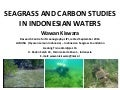 Seagrass and Carbon Studies in Indonesian Waters