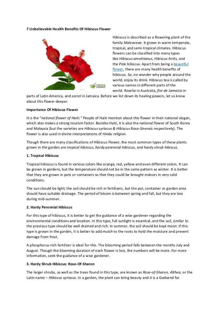 7 unbelievable health benefits of hibiscus flower izmirmasajfo