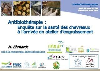 Brune Belles Formes Plan Cul Boulogne-Billancourt