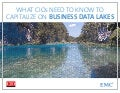 EMC CIO Connect - What CIOs Need to Know to Capitalize on Business Data lakes