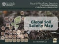 ITEM 6. Global Soil Salinity Map: Review the Concept Paper and the Technical Specifications - Yusuf Yigini, Isabel Luotto