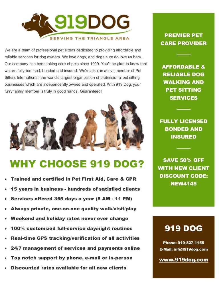 919dog Local Dog Walking Pet Sitting Services In Raleigh Du