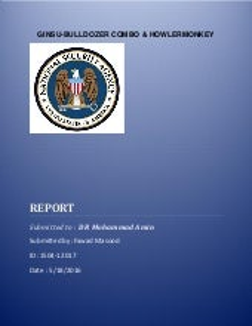 FAWAD REPORT 2