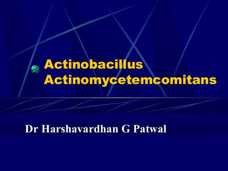 Actinomyces Actinomycetemcomitans - Dr Harshavardhan Patwal