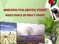 Abiotic stress resistance @ sid