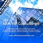 ABM VIP Consulting® Management Consulting
