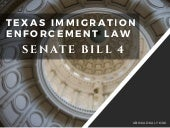 Immigration Enforcement Law in Texas