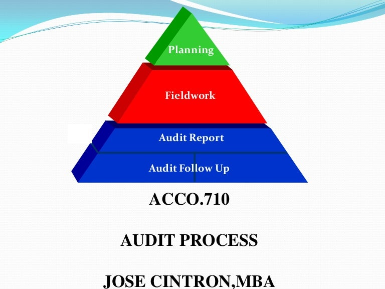 Audit Process, Audit Procedures, Audit Planning, Auditing