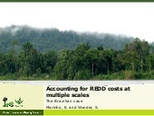 Accounting for REDD+ costs at multiple scales: the Brazilian case