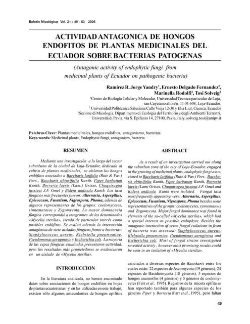 Actividad AntagóNica De Hongos EndóFitos De Plantas Medicinales Del Ecuador Sobre Bacterias PatóGenas.