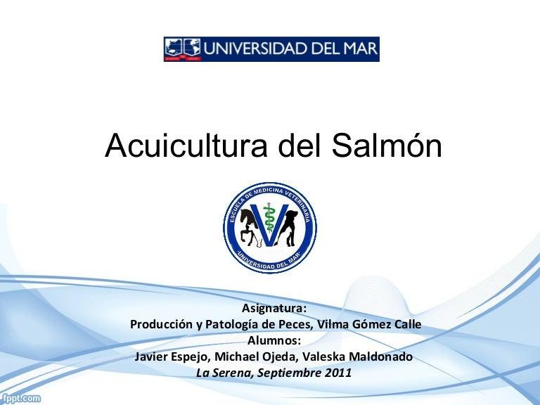 Acuicultura del salmon