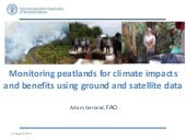 Monitoring peatlands for climate impacts and benefits using ground and satellite data