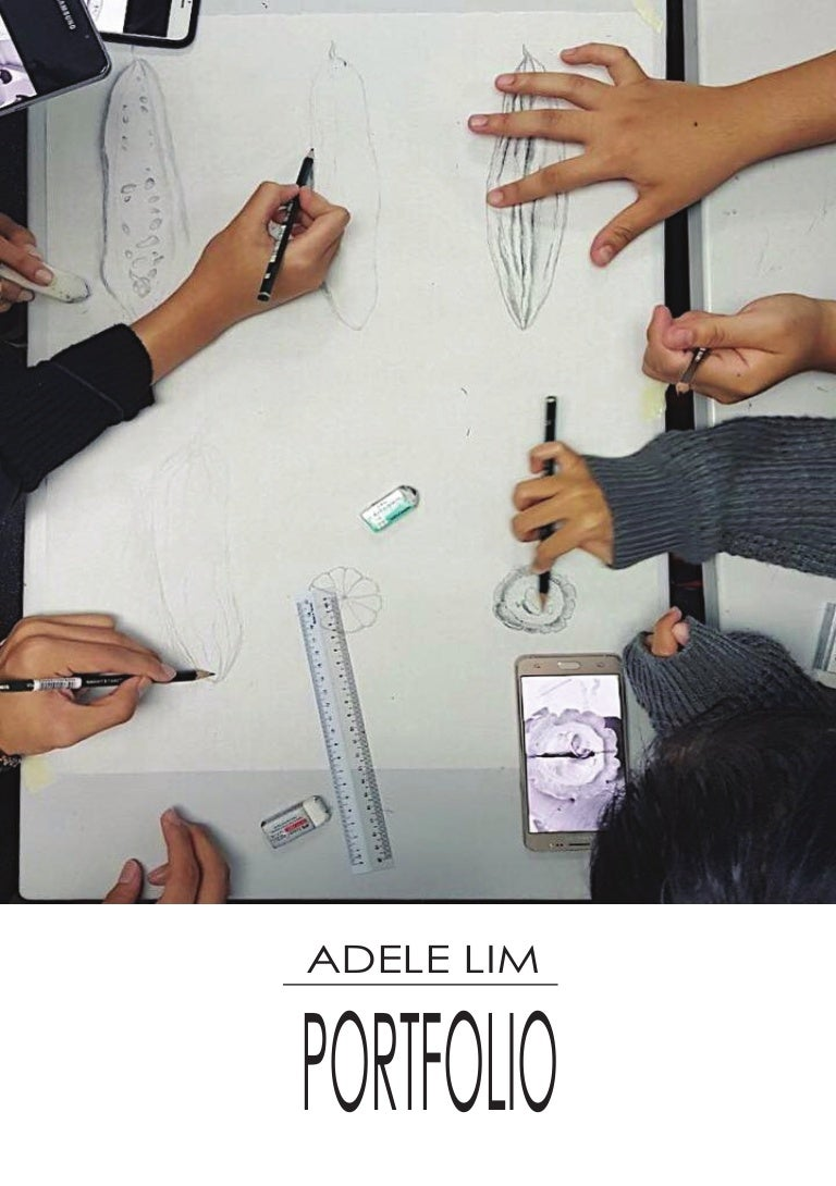 Adele Portfolio Fascience Chapter 19 Bacteria Adeleportfolio 170613080635 Thumbnail 4cb1497341243