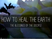 How To Heal The Earth - A disciple's effect