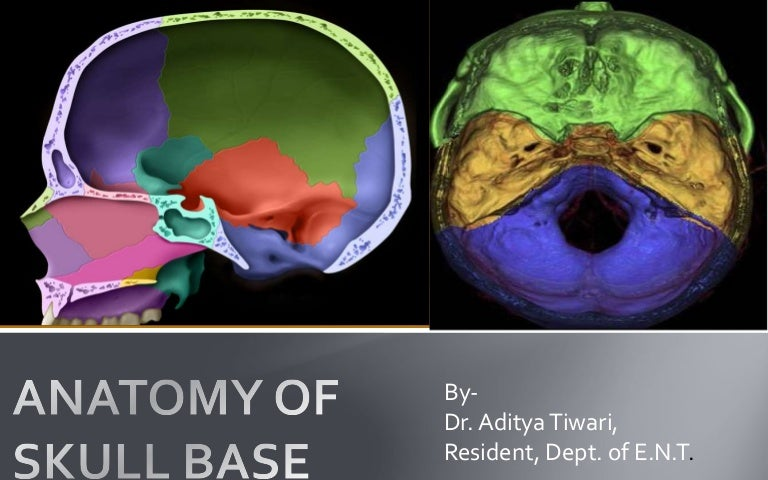 Skull Base Anatomy By Dr Aditya Tiwari