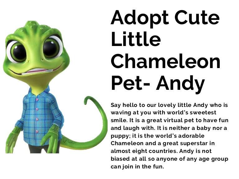 Adopt Cute Little Chameleon Pet Andy,Sun Conure For Sale