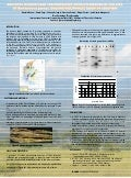 Poster33: Advances in molecular and pathogenic characterization of isolates of Burkholderia glumae, causing rice panicle blight in Colombia