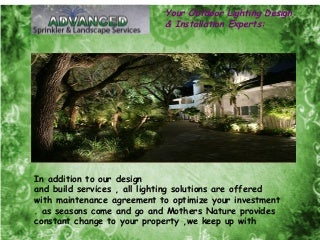 Your Outdoor Lighting Design & Installation Experts