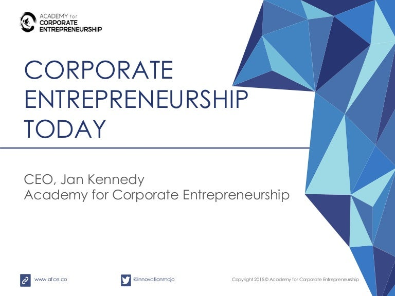 corporate entrepreneurship Corporate entrepreneurship is more than just new product development it includes innovations in services, channels, brands and intellectual property models the courses explore how corporate entrepreneurs can employ existing resources and use innovation practices to function as an entrepreneur within a firm.