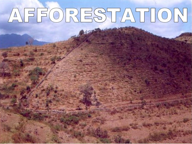 afforestation deforestation