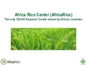 Africa Rice Center (AfricaRice)